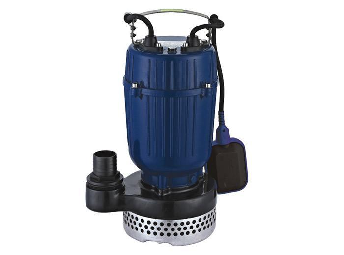 SPA Clean Pump